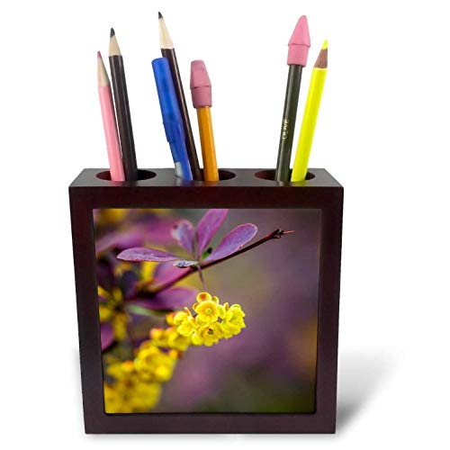 3dRose Alexis Photography - Flowers - Yellow Dogwood Flowers, Purple Background. Colorful Floral Scene - 5 inch Tile Pen Holder (ph_288329_1)
