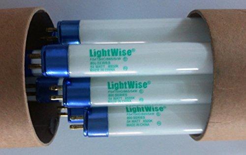 Lightingwise 4 FT 6500K T5 HO Fluorescent Grow Light Bulbs - Pack of 1,4,8,20,40 (8, 6500k - blue - veg)