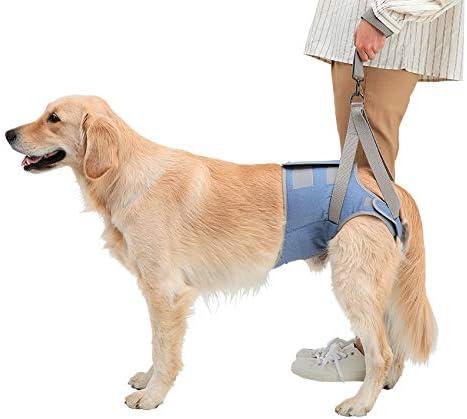 ハーネス 犬 介護