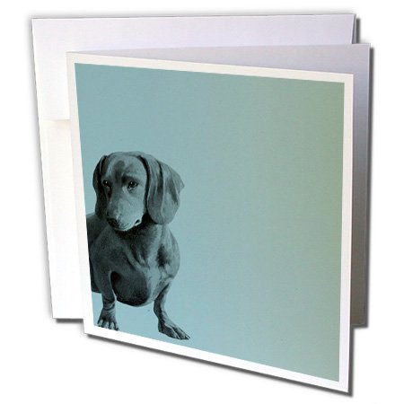 3dRose Adorable Daschund Dog pets animals - Greeting Cards, 6 x 6 inches, set of 6 (gc_130560_1)