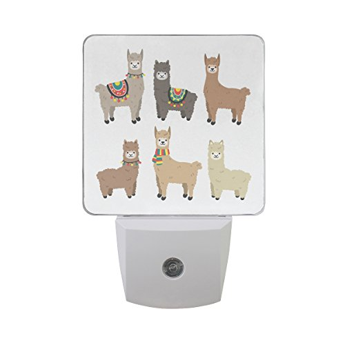 Naanle Set of 2 Cute Llama And Alpaca Cartoon Character Funny Smile Animals On White Auto Sensor LED Dusk To Dawn Night Light Plug In Indoor for Adults by Naanle