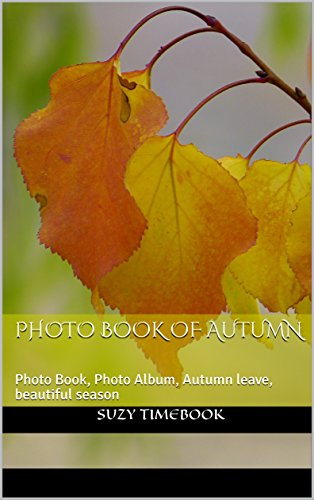 Photo Book of Autumn: Photo Book, Photo Album, Autumn leave, beautiful season, art & photography