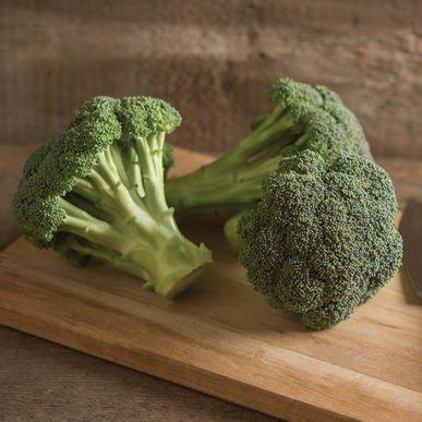 David's Garden Seeds Broccoli Green Magic D2813 (Green) 100 Hybrid Seeds
