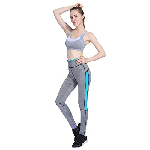Catty Kelly Yoga Fitness Leggings Running Gym Stretch Sports Pants Trousers (M, SKY blue)