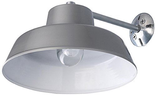 Canarm BL14CWS All Weather 1-Bulb Ceiling or Wall Mount All Weather Light with Clear Glass Globe, Grey by Canarm