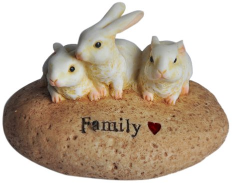 Top Collection Enchanted Story Fairy Garden Rabbit Stone Fam
