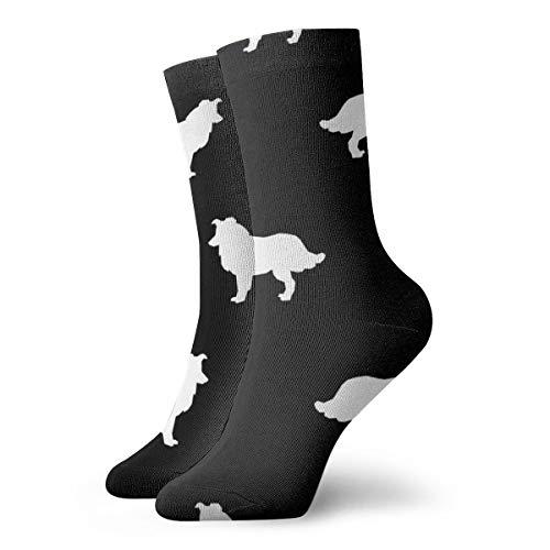 Sil Border - Men's Border Collie Sil b Dress Socks for Men - Cotton Fashion Patterned Socks