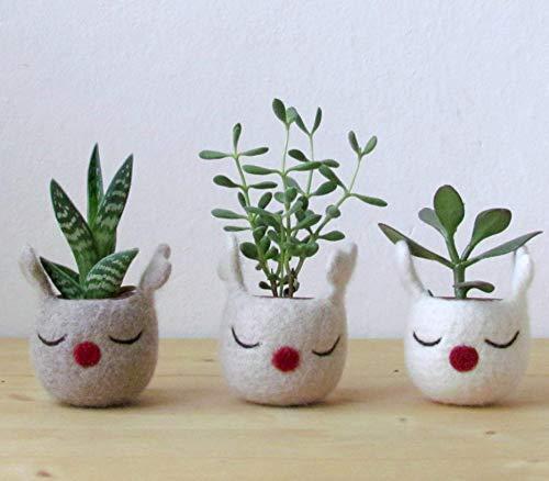 Christmas reindeer planter/Christmas felt vase/Succulent planter/Christmas decor/Rudy the red nosed reindeer planter - Set of three