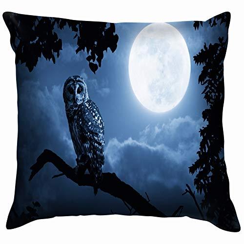 Quiet Night Moon Rising Over Animals Wildlife Owl Holidays Soft Cotton Linen Cushion Cover Pillowcases Throw Pillow Decor Pillow Case Home Decor 12X12 Inch