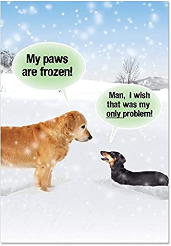 NobleWorks ''My Paws Are Frozen'' Funny Merry Christmas Greeting Card, 5'' x 7'' (5953) - 5' Snowmen