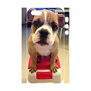 Bulldog Dog Design Unique Customized 3D Hard Case Cover for iPhone 5,5S, Bulldog Dog iPhone 5,5S 3D Cover Case