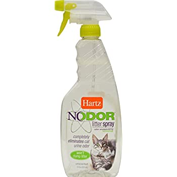 Amazon Com Zero Odor Pet Stain Remover And Molecular