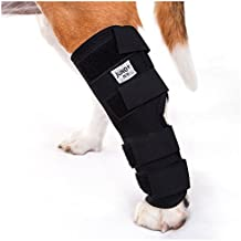 JunoPets Dog Canine Rear Leg Knee Brace, Hock Joint Wrap for Heals and Prevents Injuries and Sprains Helps with Loss of Stability (Hind Leg)