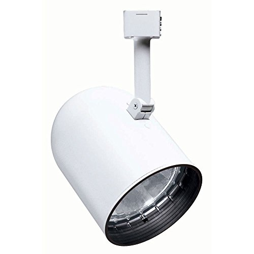 Juno Lighting R502B-WH Trac-Lites Round Back Cylinder Line Voltage PAR30 Lamp Holder, White by Juno Lighting Group