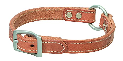 Terrain D.O.G. Harness Leather Ring-in-Center Dog Collar, 3/4