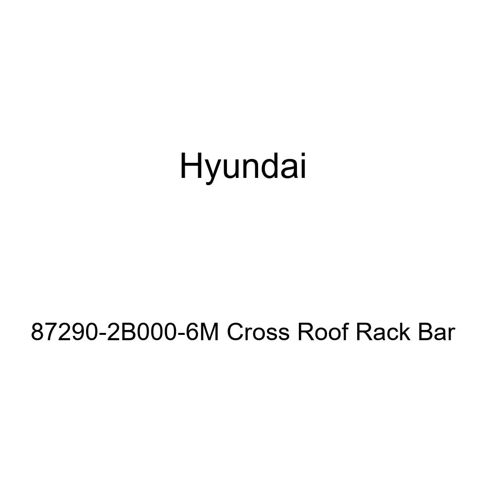 HYUNDAI Genuine 87290-2B000-6M Cross Roof Rack Bar