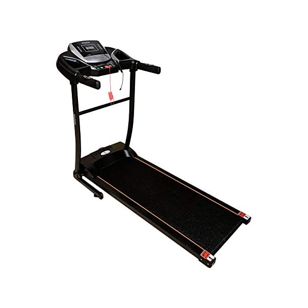 Cockatoo CTM-05 Multi-Function Treadmill India Online