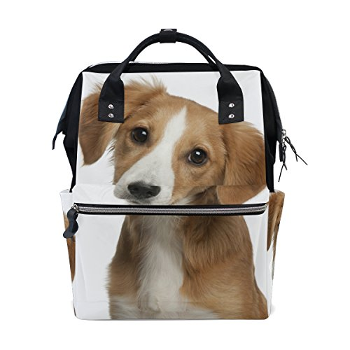 Baby Stroller Dog Compartment - 8
