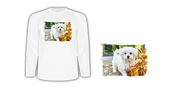 Camiseta Manga Larga Perro Raza Bichon MALTES Tshirt: Amazon ...