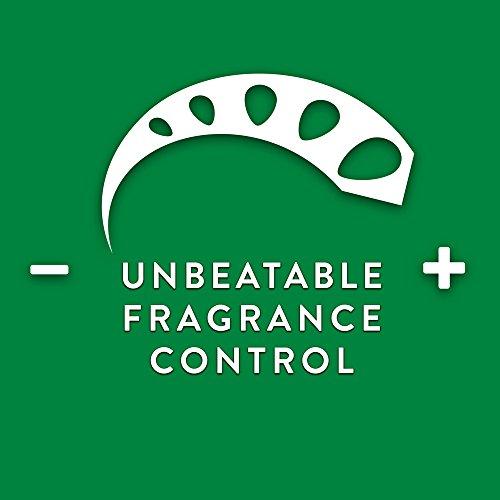 [해외]에어 위크 향수 오일 따뜻하게 플러그인 공기 청정기, 화이트, 1 백작/Air Wick Scented Oil Warmer Plugin Air Freshener, White, 1 Count