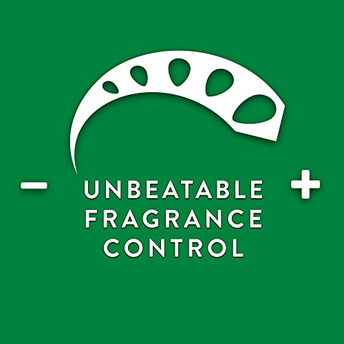 Air Wick Scented Oil Refill Plug in Air Freshener Essential Oils, Apple Cinnamon Medley, 2ct, 1.34oz