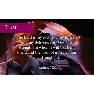 Pass Along Pocket Scripture Cards, Trust, Psalms 18:2, Pack of 25: Office Products