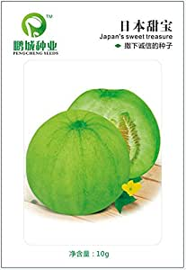 Fruit seeds Japanese sweet treasure seed melon crisp and delicious Can be potted 10 g