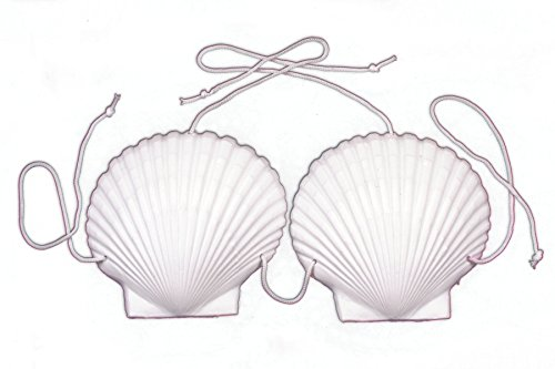 Loftus Women Mermaid Adult Sea Shell Bra Bikini Top, White, One Size