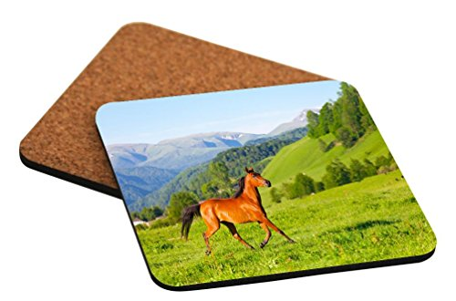 Rikki Knight Arab Racer Horse on Green Meadow Design Cork Backed Hard Square Beer Coasters, 4-Inch, Brown, 2-Pack]()