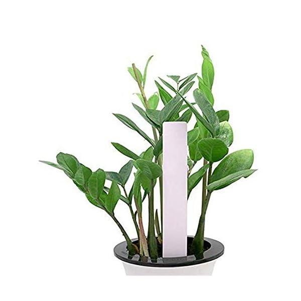 XD E-commerce Etichette vegetali per Erbe Impianto di plastica Riutilizzabile Etichette vegetali per Fiori Etichette per… 4 spesavip