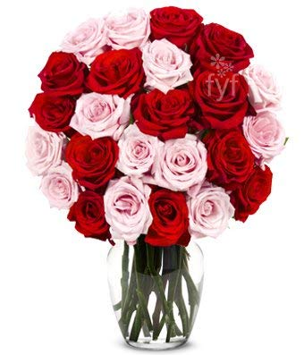 Flowers - Two Dozen Red & Pink Roses (Free Vase Included) (Dozen Pink Love Roses)