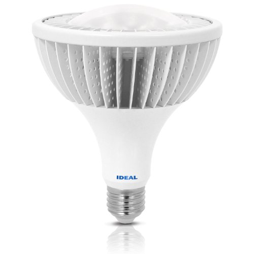 Ideal 22 Watt Indoor Flood Light