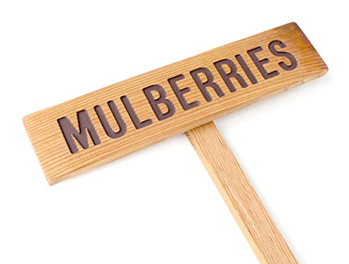 - MULBERRIES Sign, Fruit Marker, Outdoor Sign, Yard Art, Hanging Fruit Sign, Plant Label, Mulberry Marker, Garden Sign, Fruit Tree Sign