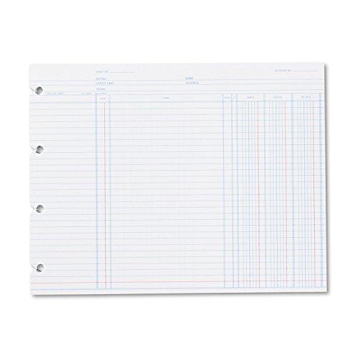 New-Wilson Jones N2D - Accounting, 9-1/4 x 11-7/8, 100 Loose Sheets/Pack - WLJN2D