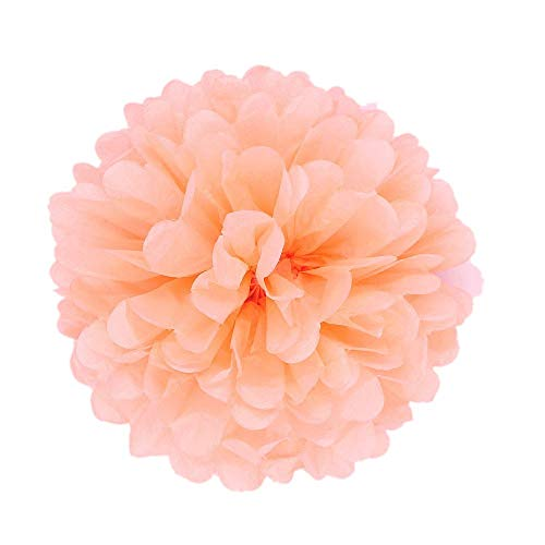 JZK 10PCS x 10 inch 25 cm Coral Tissue pom poms Pompoms Decorations Accessories for Wedding Birthday Baby Shower holy Communion Graduation Baptism Party Christmas Halloween Hanging Paper Flower Balls ()