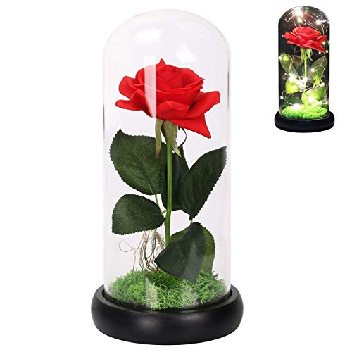LANGXUN Red Silk Rose and LED Light That Lasts Forever in Glass Dome Inspired and The Wooden Black Base Covered with Real Moss for Home Decor Wedding Decorations and Gifts for Women ()