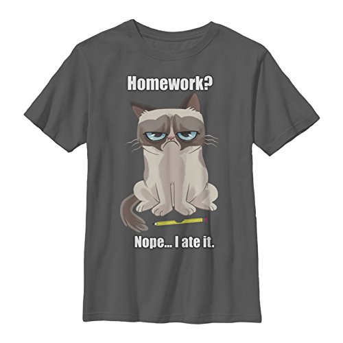 Grumpy Cat Big Boys' No Homework Graphic T-Shirt, Charcoal, YL