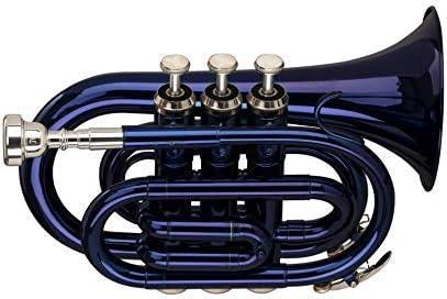 Stagg Bb Trompeta de bolsillo con estuche, acabado lacado azul: Amazon.es: Instrumentos musicales
