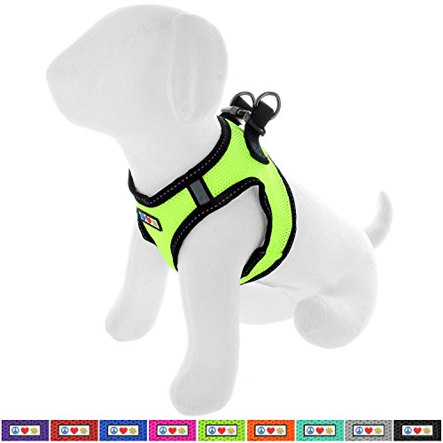 Pawtitas Pet Reflective Mesh Dog Harness, Step in or Vest Harness, Comfort Control, Training Walking of Your Puppy/Dog XXS Extra Extra Small Green Dog Harness