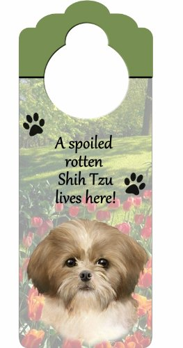 (Shih Tzu Puppycut, Tan and White Wood Sign