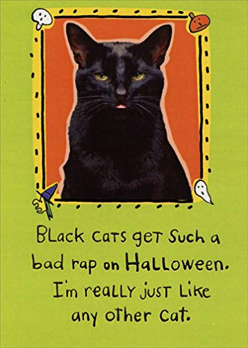 Black Cats Get Bad Rap Funny Halloween Card - Recycled Paper Greetings]()