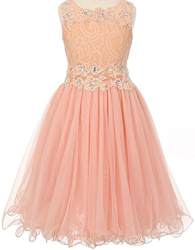 Organza Strapless A-line Skirt (Little Girls See Through Waistline Lace Flowers Girls Dresses Peach Size 4)