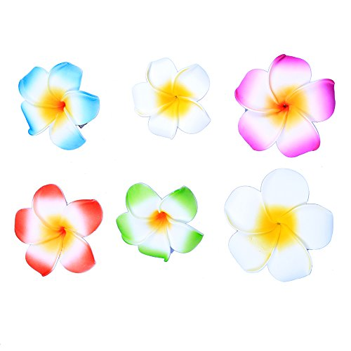 Anleolife Hawaiian Flowers Hair Clips Bridal Barrette Tropical Beach Wedding Plumeria Flower Women Party Bridal Orchid Hairclip Hairpin Beauty Accessories Large Small 6pcs/lot (mix color 6pcs) (Tropical Flowers)