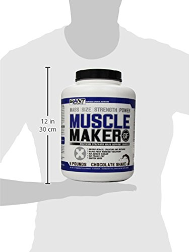 767a88d2 Giant Sports Muscle Maker, Chocolate, 6 Pound