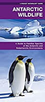 Antarctic Wildlife: A Folding Pocket Guide to Familiar Species of the Antarctic and Subantarctic Environments (A Pocket Naturalist Guide)