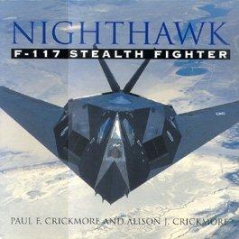 Nighthawk: F-117 stealth fighter