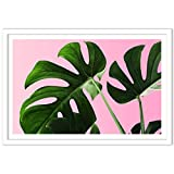 Humble Chic Framed Wall Decor - Fine Art Picture Poster Prints in White Frame for Home Decorations Living Dining Room Bedroom Kitchen Bathroom Office - Monstera Palm Plant Leaf, 24x36 Horizontal