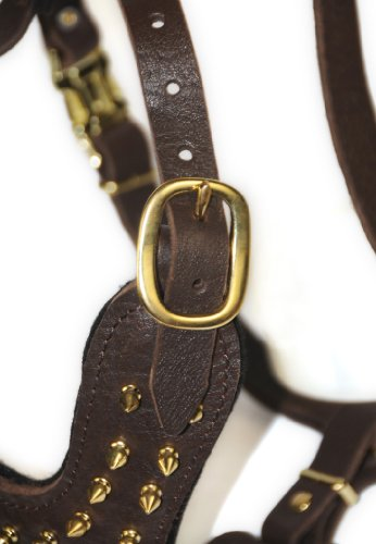 Dean and Tyler The Blade with Handle Solid Brass Hardware Leather Dog Harness, Brown, Medium - Fits Girth Size: 20-Inch to 32-Inch by Dean & Tyler (Image #2)