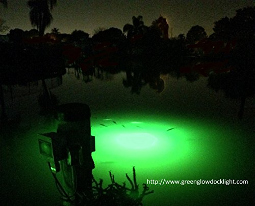 21,000 Lumens, Extreme Brilliant Green Underwater Fish Light Kit w/50' Lamp Cord, Dock Light