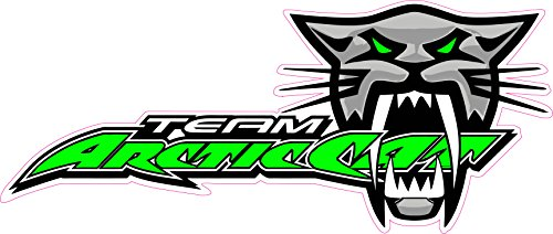 Nostalgia Decals Team Arctic Cat Large 12